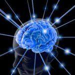 cerebro tiro olímpico