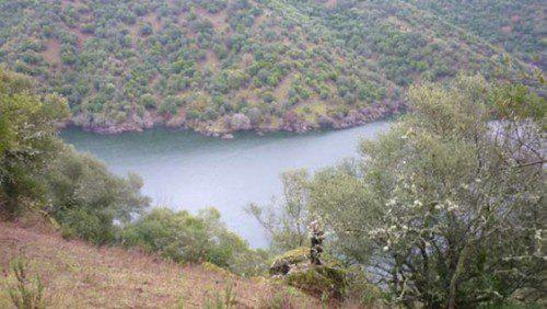 Imágenes de la mancha que se monteó, de unas 250 hectáreas, con 32 puestos y siete rehalas.