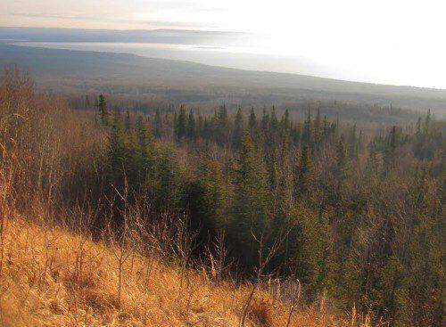 Vistas del lago Lesser Slave desde la montaña Marten.