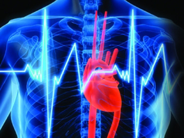 efectos stres combate corazon