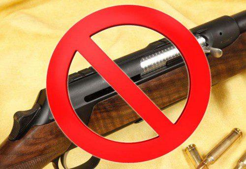 Prohibición rifles semiautomáticos copia
