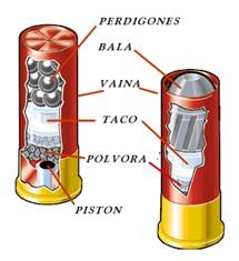 Componentes cartucho escopeta