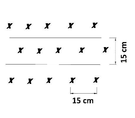 ejercicios control de disparador